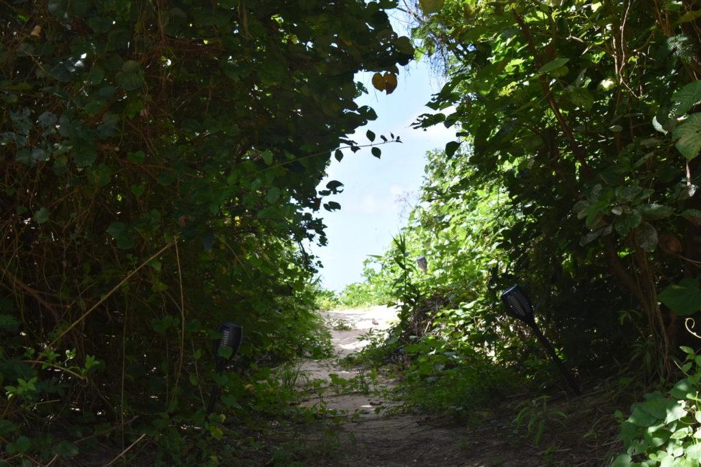 the rescape プライベートビーチまでの道3