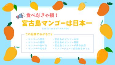 宮古島マンゴーの時期は6~8月!濃厚な味わいを堪能しよう