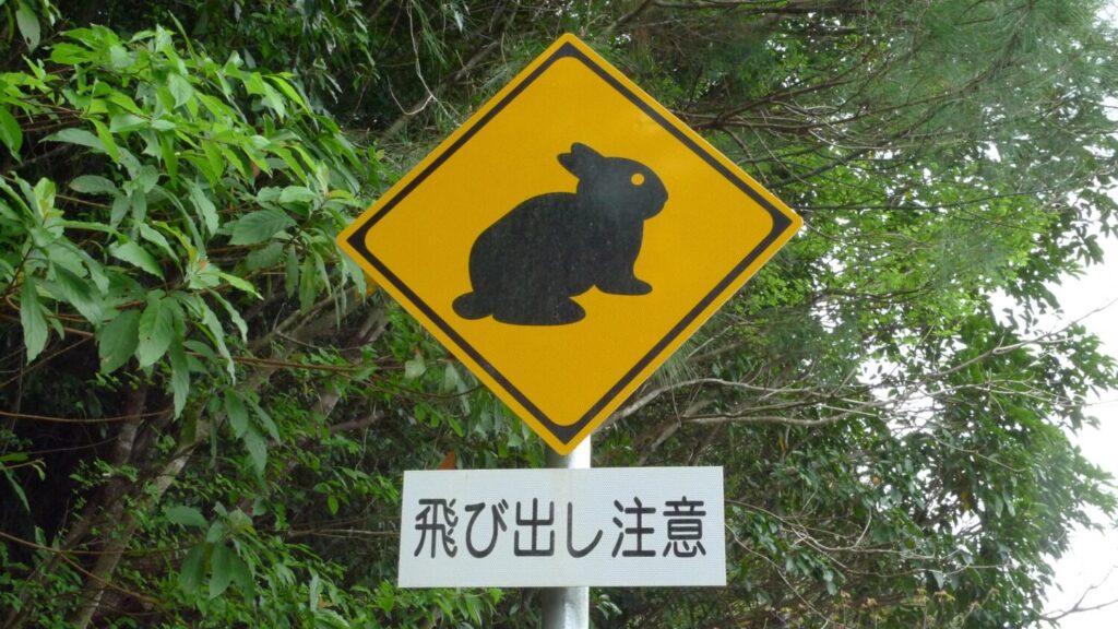 奄美大島 飛び出し注意の看板